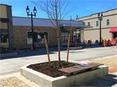 Main Street planter and bench