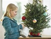 Girl watering Christmas tree