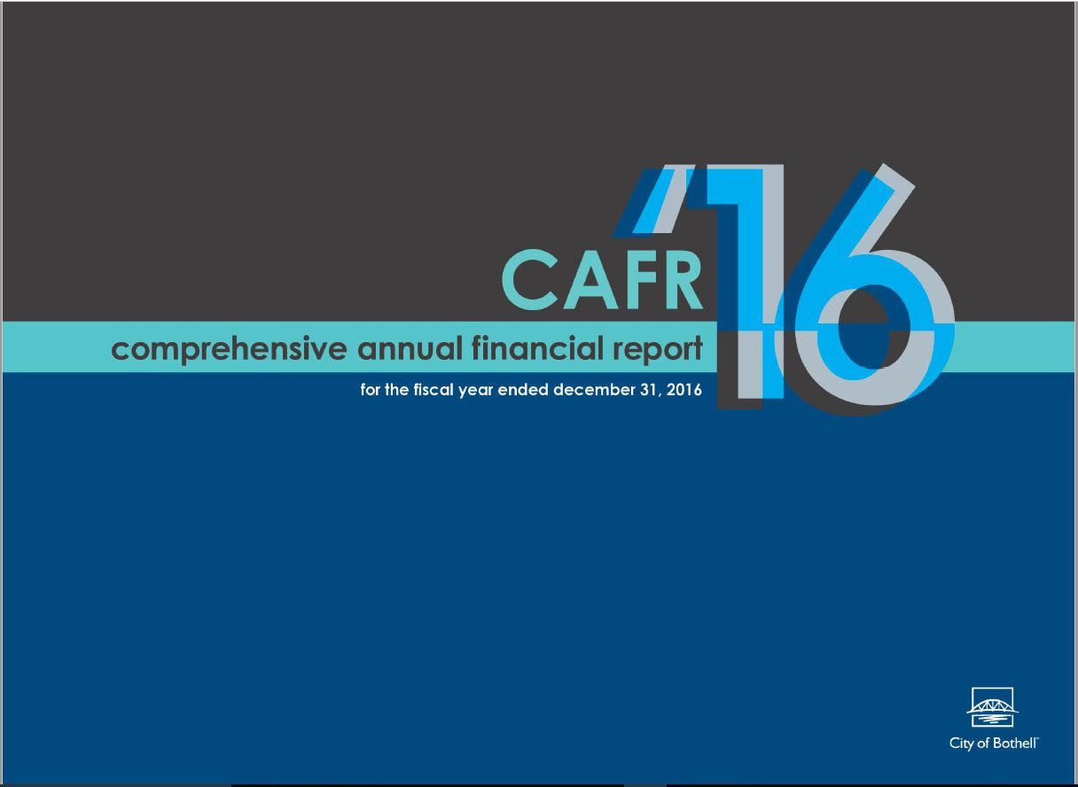 2016 Comprehensive Annual Financial Report