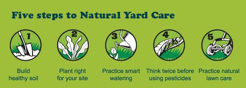 Five Steps to Natural Yard Care (JPG)