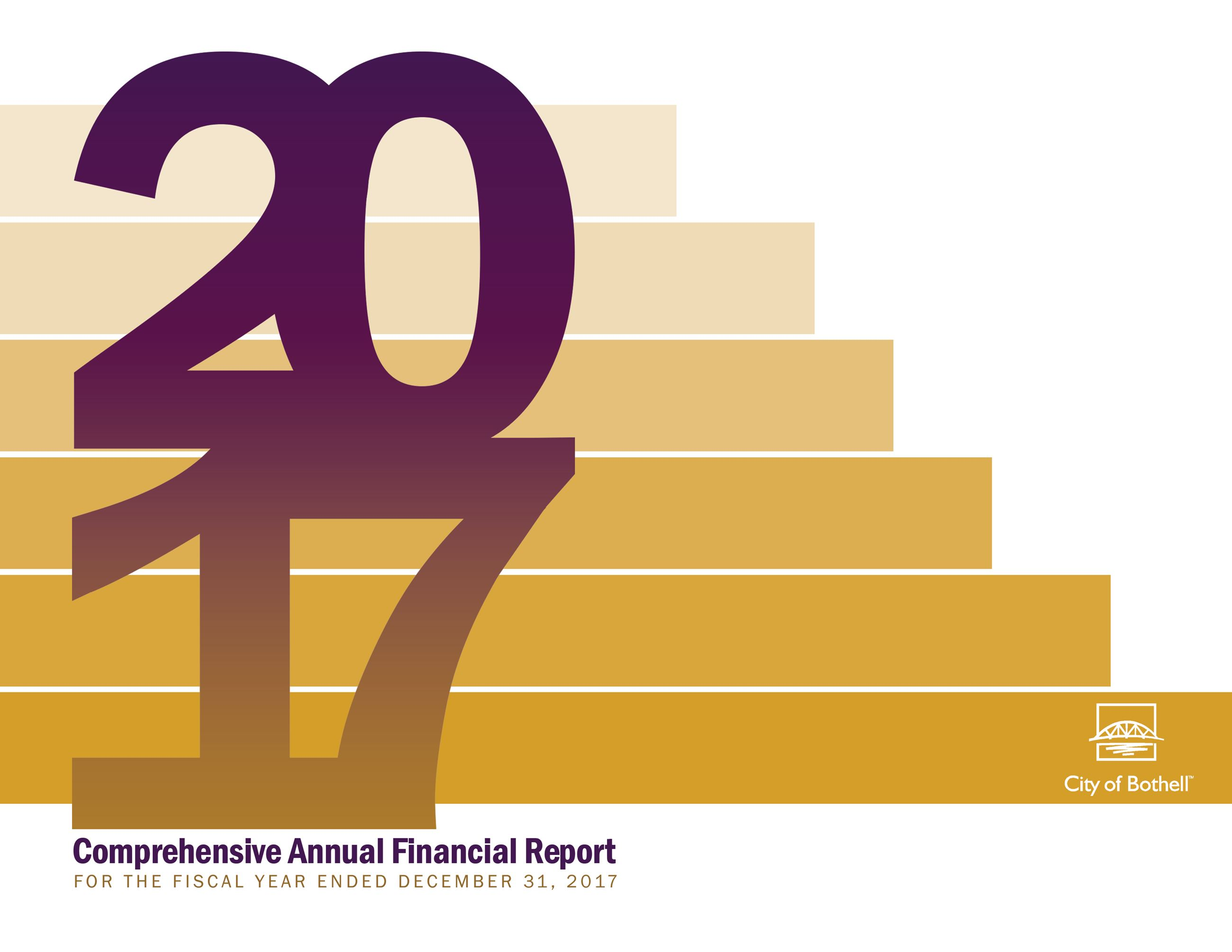 2017 Comprehensive Annual Financial Report