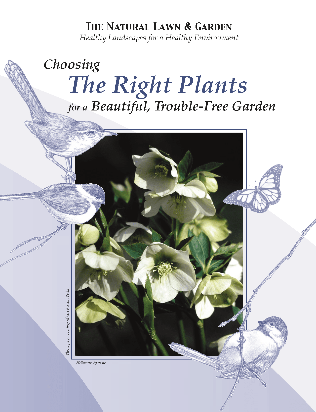 COVER - Choosing the Right Plants