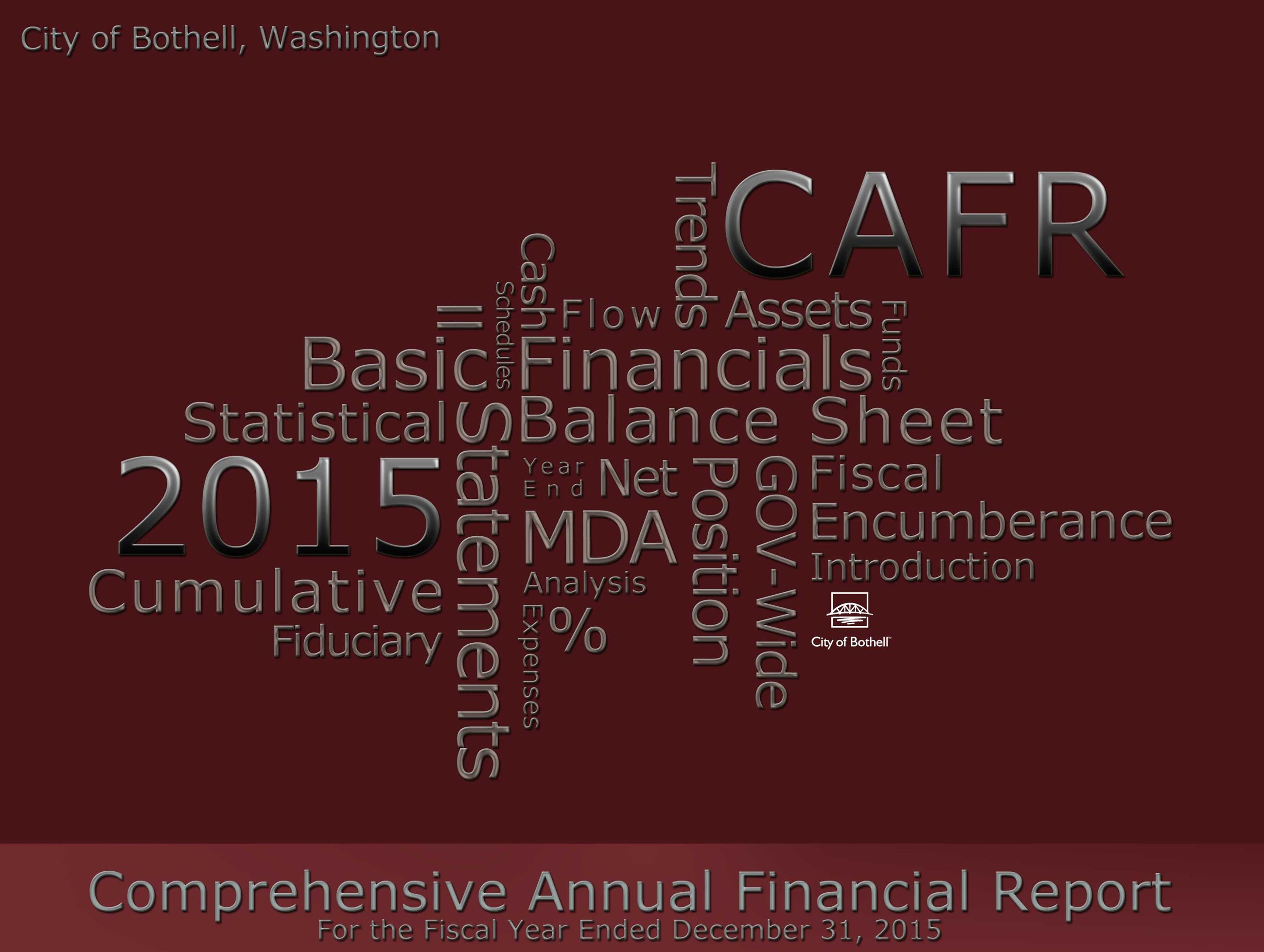 2015 Comprehensive Annual Financial Report Photo