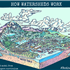 Build a Watershed Model