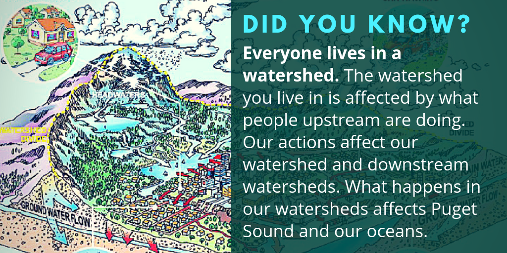 Everyone lives in a watershed
