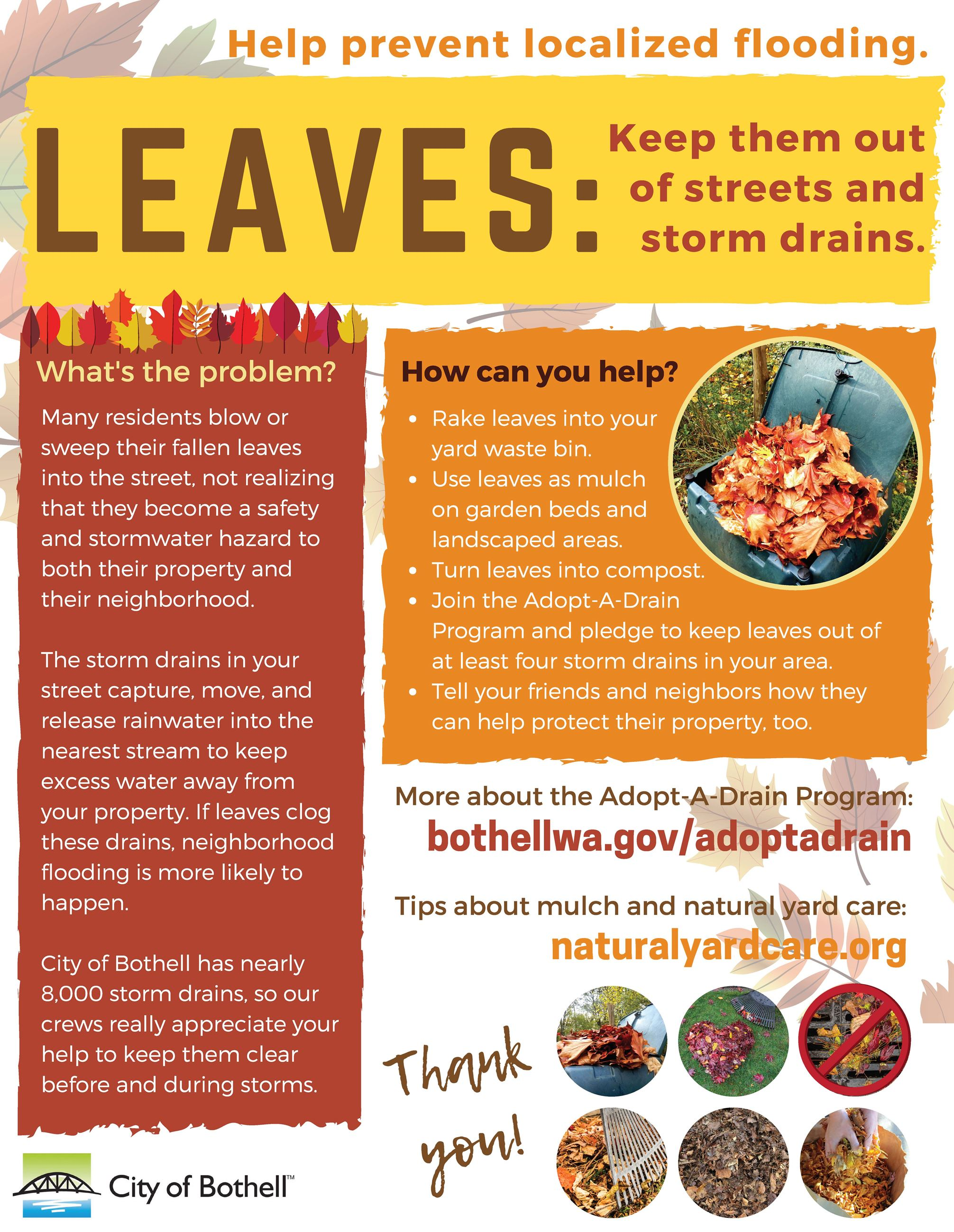 Keep leaves out of storm drains (JPG)