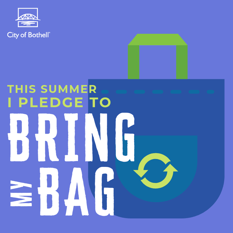 Green Summer Pledge - Bring bag